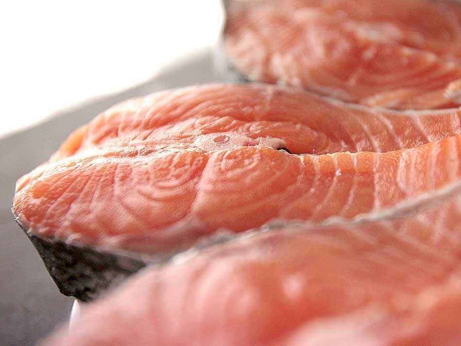 Salmon fresco