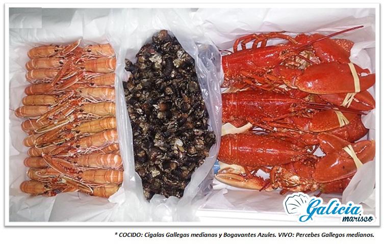 embalaje envío pescado fresco