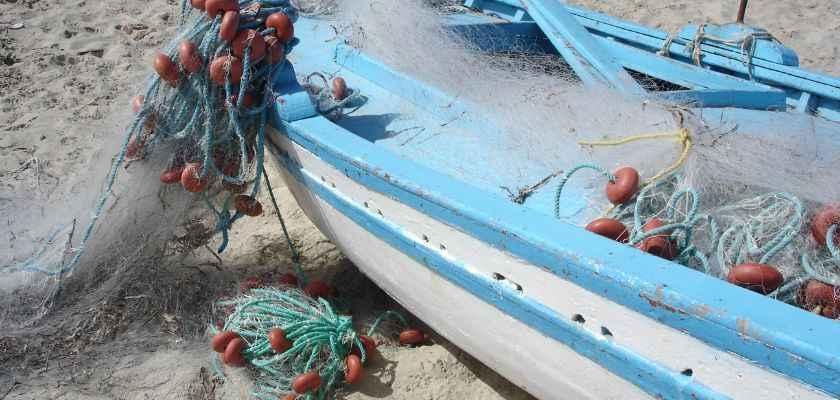 ¿Que es una lonja de pescado y marisco?